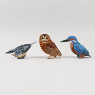 Pop Out Birds by Alice Melvin