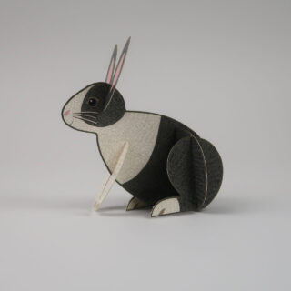 Pop-Out Pets by Alice Melvin - Rabbit