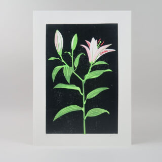 Lily Lino Print by James Brown