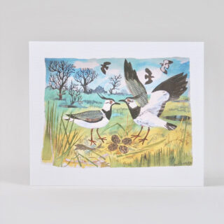 Lapwing's Nest Card by Mark Hearld