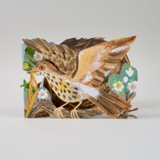 Mark Hearld Die Cut Card - Nest